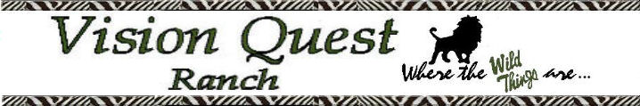 Vision Quest Ranch Banner 2