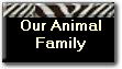 Our Animal
